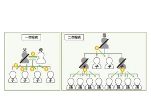 二次相続により法定相続人が多数いる底地の整理のサムネイルイメージ